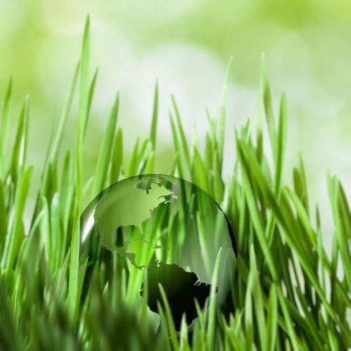 Medioambiental Y Energías Renovables