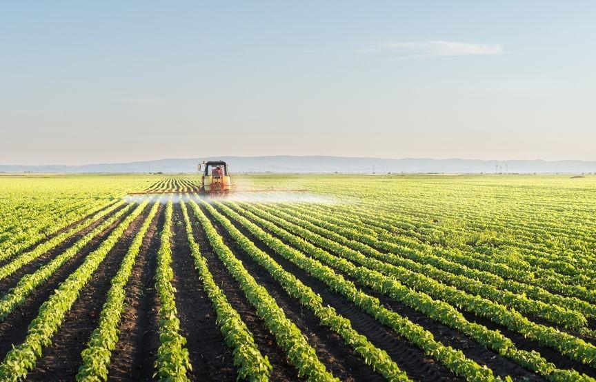 Agricultura e industria de la alimentación